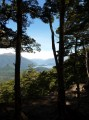 View of Lake Manapouri from Circle track